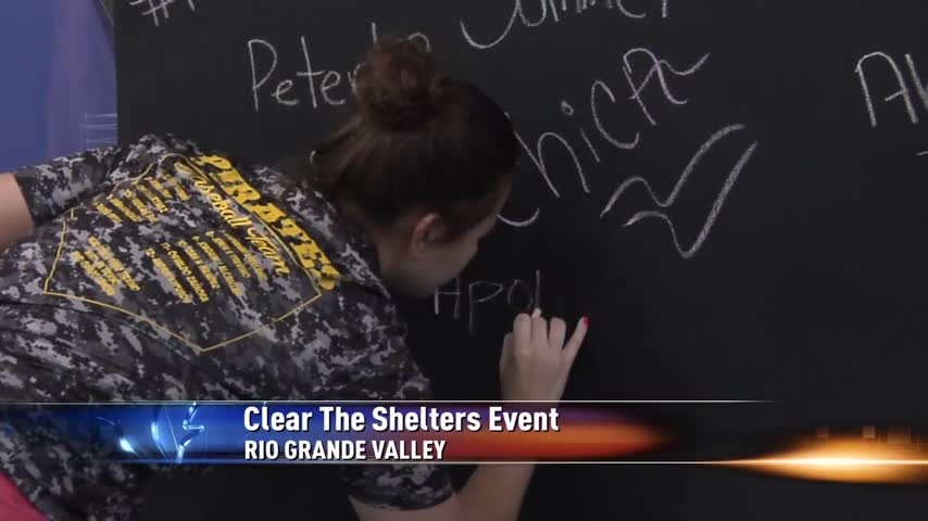 National Clear the Shelters Event a Success in the RGV_27445225-159532