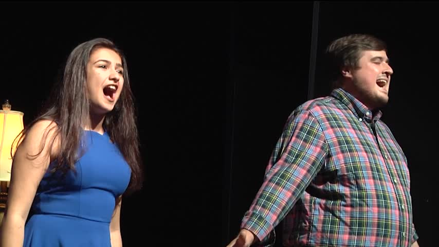 Next to Normal Camile Playhouse