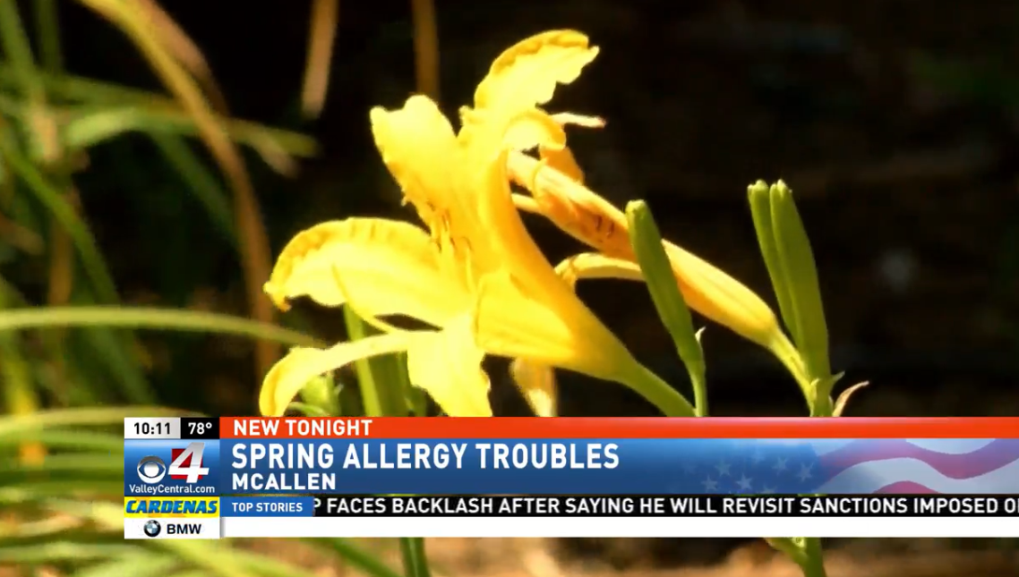 spring allergy troubles.png