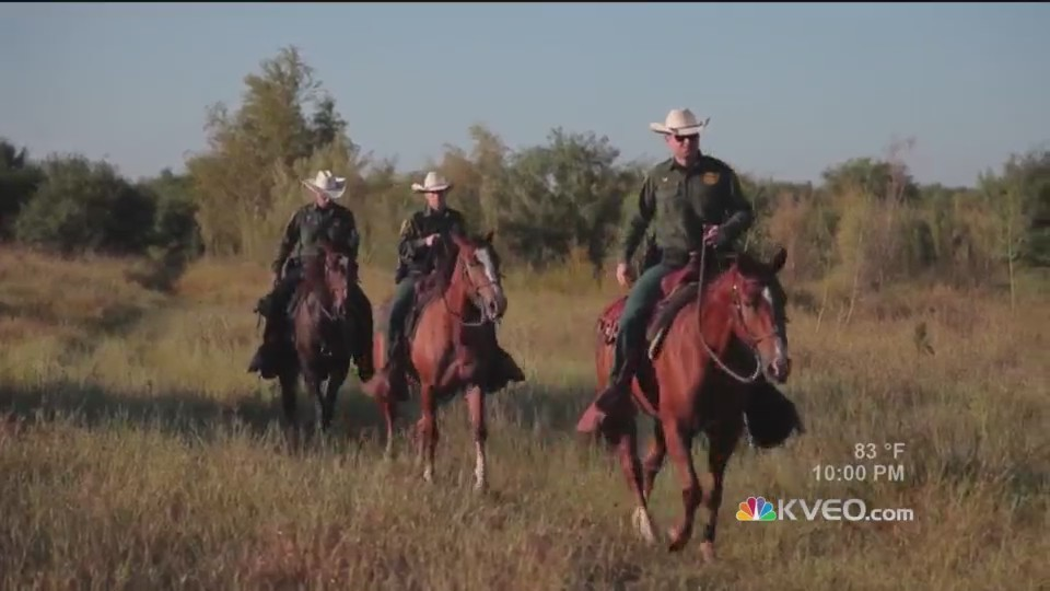 U.S. Border Patrol Mounted Horse Unit