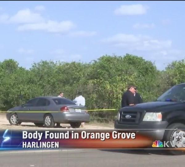 Body_Found_At_Orange_Grove_In_Harlingen_0_20180818033547