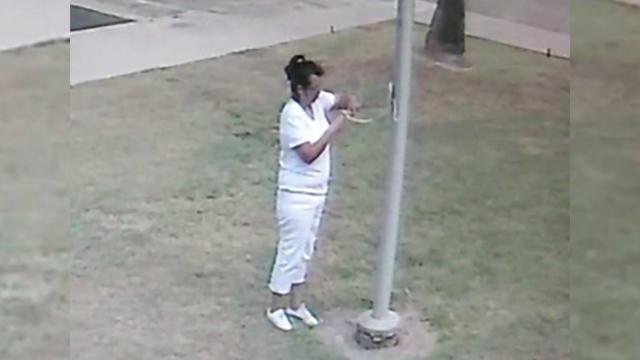 Harlingen Person of interest Criminal Mischief_1539318384664.jpg.jpg