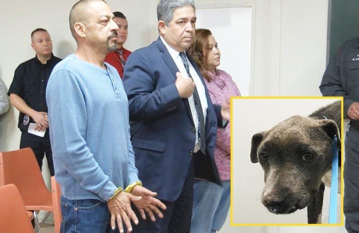 WESLACO ARRAIGNMENT WITH DOG.jpg