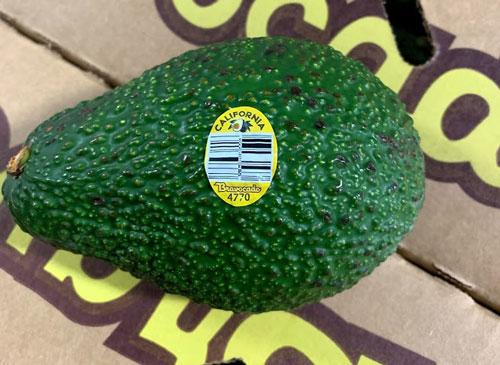 Avocado2_1553550247064.jpg