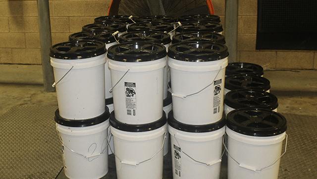 buckets courtesy cbp_1559959882638.png.jpg