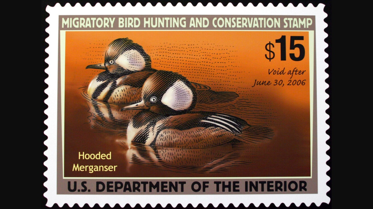 Federal Duck Stamps: Trump-era requirement for artists is ...